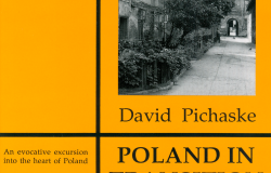 Poland_in_Transition_COVER-tiny